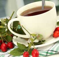 Настойка боярышника польза для мужчин. Чай из боярышника: как заваривать, полезные свойства и противопоказания