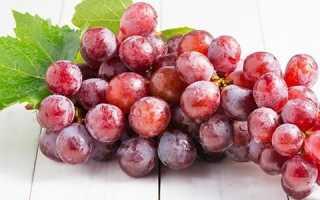 Можно ли кушать виноград на ночь. Можно ли есть виноград вечером