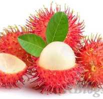 Рамбутан фрукт косточка. Рамбутан — что это? Фото, вкус и полезные свойства.