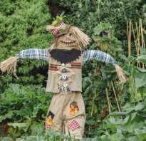 Пугало своими руками для сада и огорода. Огородное чучело своими руками