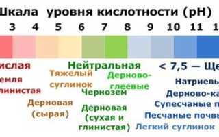 Рн почвы таблица. Таблица и значимость кислотности почвы для садовых и огородных культур