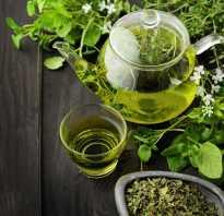 Чай из мелиссы как правильно заварить. Правила заваривания и употребления чая с мелиссой