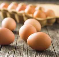 Почему в яйцах перепелок кровь. Кровь на скорлупе и кровь внутри куриного яйца