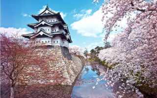 Красота цветущих деревьев. Цветущие деревья. Красота весны… (Фото)