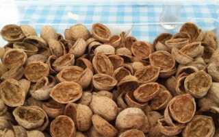 Ореховая скорлупа как удобрение. Куда девать скорлупу орехов