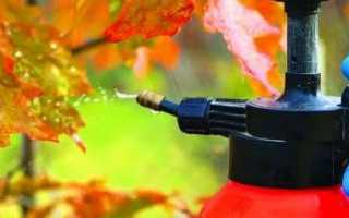 Осенняя подкормка деревьев и кустарников видео. Осенняя подкормка сада — что, чем и когда