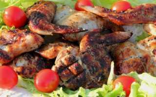 Крылышки барбекю на мангале рецепт. Крылышки на мангале