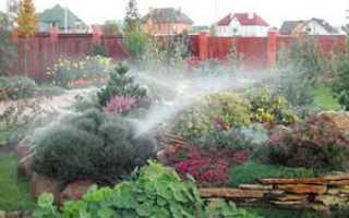 Расход воды на полив газона. Нормы и рекомендации по поливу зеленых насаждений