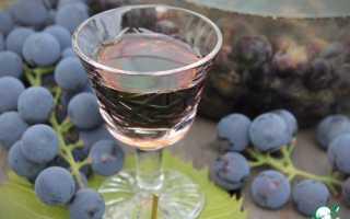 Наливка из изабеллы с водкой рецепт. Настойка «Пряно-пьяная Изабелла»