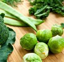 Овощ зеленого цвета. Зеленые овощи. Состав, свойства и польза овощей зеленого цвета