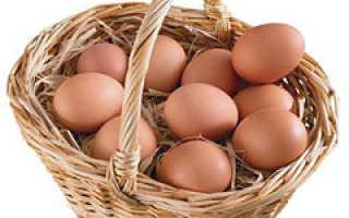 Почему яйца коричневые и белые. Какие яйца полезнее — с белой скорлупой или с коричневой?