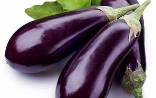 Чем удобрять баклажаны. Удобрение для баклажанов: чем лучше всего подкормить баклажаны для получения богатого урожая