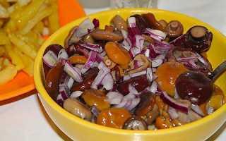 Млечники грибы приготовление. Несколько рецептов приготовления грибов млечников