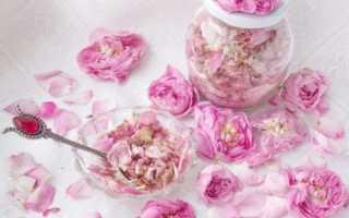 Лепестки розы полезные свойства и противопоказания. Лепестки розы: полезные свойства, противопоказания, польза и вред