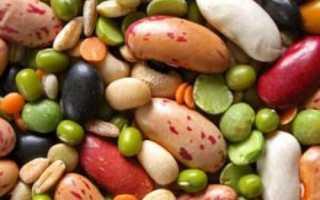 Сорта бобовых. Виды бобовых культур