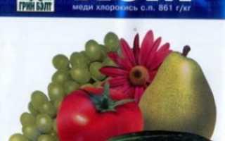 Хлорокись меди инструкция по применению. Препарат Хом (хлорокись меди): применение в садоводстве