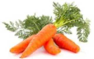 Сушим морковь в сушилке для овощей. Правила удачной заготовки: как сушить морковь