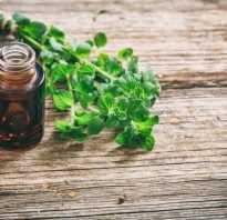 Масло душицы свойства и применение. Эфирное масло душицы