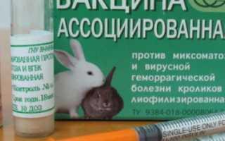 Раббивак для кроликов инструкция по применению. РАББИВАК-V