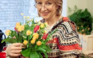 Лилия не цветет в домашних условиях. Почему не цветет лилия комнатная?