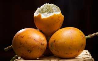 Фрукты гранадилла. Гранадилла — каковы полезные свойства этого экзотического фрукта?