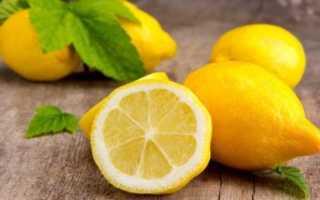 Лимон виды и сорта. Сорта и виды лимонов для домашнего выращивания