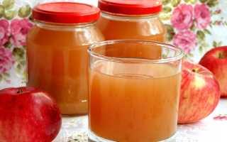 Отжим яблочного сока в домашних условиях. Как приготовить яблочный сок в домашних условиях?