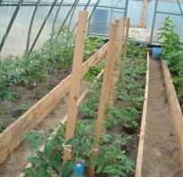 Чем огородить грядки в теплице. Грядки в теплице 3 на 6