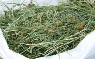 Сколько сена нужно кролику на год. Сено для кроликов — выбор, состав и заготовка сена