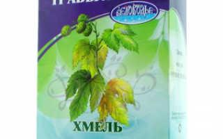 Хмель трава целебные свойства для женщин. Хмель шишки «Беловодье», 25 гр