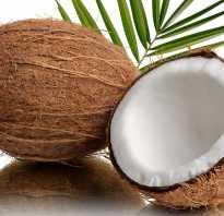 Кокосовое молоко детям с какого возраста. С какого возраста можно кокос и кокосовое молоко ребенку