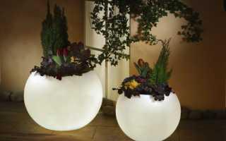 Подсветка для цветов своими руками. Как сделать искусственное освещение для цветов