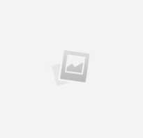 Салат виды. 10 видов зеленого салата и 6 потрясающе простых рецептов с ним