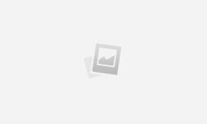Как выбрать службу доставки цветов в Петропавловск-Камчатский?