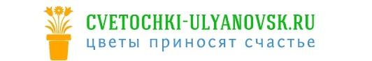 Cvetochki-ulyanovsk.ru